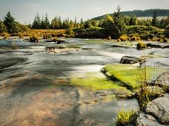The Otter's Pool (TrotterFechan) Tags: scotland dumfriesgalloway gallowayforestpark raidersroad