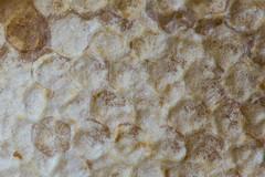 honeycomb (jlodder) Tags: chicago illinois unitedstates us honeycomb laneyhoney hydeparkproduce flickrfriday matrix texture