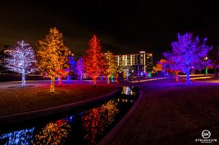 Dallas Event Photographer-9785