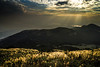 DSC01360_LR_PS_LR (a.lu.) Tags: sunset mountain scenery taiwan taipei miscanthus awn silvergrass datun japanesesilvergrass mtdatun