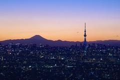富士山と東京スカイツリー Mt. Fuji and Tokyo Sky Tree (ELCAN KE-7A) Tags: blue sunset japan tokyo fuji mt pentax dusk magic illumination hour 日本 東京 moment ブルー 夕暮れ 富士山 2015 日没 イルミネーション ライトアップ ペンタックス skytree マジック スカイツリー モーメント k5ⅱs アワー