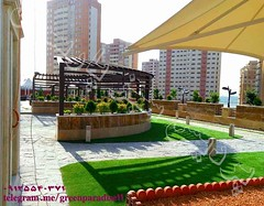 lll (parsiangreenparadise) Tags: roof rooftop garden roofgarden greenroof