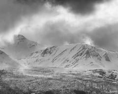 """Spring #1"" (Ronny rbekk - http://arcticphotography.no) Tags: winter blackandwhite bw monochrome norway norge norwegen arctic monochrom sh nordnorge harstad troms whiteandblack kvfjord northernnorway flickrsbest specland sorthvit visipix"
