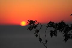 IMG_6993 (sjj62) Tags: sunset seascape doorcounty sunsetting doorcountywi 40d ellisonbaywi ellisonbluffstatenaturalarea