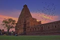 The big temple, Thanjavur, Unesco classified monument. (goa974) Tags: sunset india architecture temple big ancient nikon colorful asia indian gimp unesco temples thanjavur chola perya dravidian kovil gopuram tanjore hindouism brihadeeswarar darktable brihadiswarar