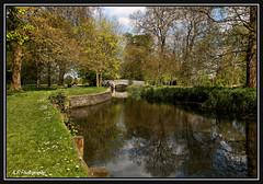 04.05.16 Beddington Park... (Tadie88) Tags: trees nature water wildlife bridges surrey wallington lunaphoto beddingtonlake