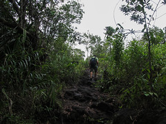 "Parc National Arenal: champ de lave <a style=""margin-left:10px; font-size:0.8em;"" href=""http://www.flickr.com/photos/127723101@N04/26899953875/"" target=""_blank"">@flickr</a>"