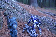 Our Fallen Brothers (OculusNuva) Tags: macro soldier photography war halo mcfarlane macrophotography mcfarlanehalo halophotography