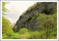 Rockface. (A tramp in the hills) Tags: derbyshire peakdistrict rockface limestone whitepeak riverwye cheedale