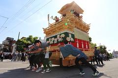 Pull the float (Teruhide Tomori) Tags: people festival japan event  float  gifu ogaki  ogakifestival importantintangiblefolkculturalproperties