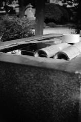(evening breeze) (Dinasty_Oomae) Tags: street blackandwhite bw water monochrome blackwhite shrine outdoor basin chiba zeissikon  boxcamera  dipper funabashi     boxtengor