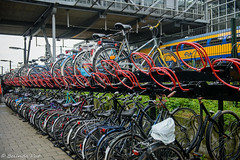 BP_20160626_124648 (Belinda Put) Tags: ncnuitje denbosch fotorally rood typisch hollands