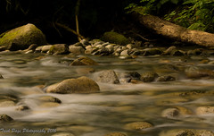 Sounds of Silence - Explored - thank you! (trishp97) Tags: park longexposure nature river landscape britishcolumbia
