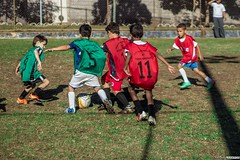 Torneio Infantil do CRC 2016 (Tatiana Santos - Online Portfolio) Tags: playing game green sports sport ball de football goal minas gerais photographer play ar action soccer games player mg campo praa fans ao fotografia em society score livre jogo esporte esportes gametime fit active cludio futball