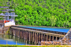 Dam (David Davila Photography) Tags: vacation tree water outdoor dam mo missouri wife branson geotag 2016 taney laketaneycomo nikond800 holuxm241