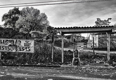 Eleições no Brasil / Elections in Brazil