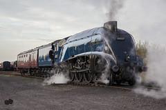 60007 Sir Nigel Gresley (craigelias1) Tags: train steam sir a4 nigel gresley