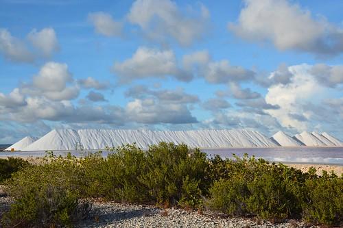 Pekelmeer salt pans (Bonaire 2014)
