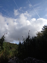 (Psinthos.Net) Tags: morning november autumn sky mountain nature clouds reeds countryside bluesky valley mountainside shrubs pinetrees stubbles      psinthos                palioprotou  palioprotouarea  palioprotoupsinthos   palioprotouvalley