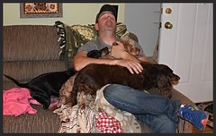 Best Of Both Worlds (Tobyotter) Tags: man male guy frank friend aaron link dachshunds jimmydean