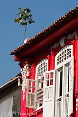 20140907_0053 (transpixt) Tags: travel singapore southeastasia p sg