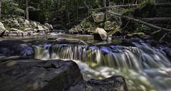 Black River (William_Doyle) Tags: park nature water state nj hacklebarney topazclean topazadjust topazclarity