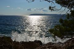 sea view (VirgiVerde) Tags: trees sea summer landscape mare estate croatia wave croazia seaview hrvatska onda pinimarittimi paesaggiomarino
