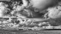 The large picture (Tommy Høyland) Tags: ranch houses sky bw white black tree nature beautiful field grass lines landscape outdoors countryside photo view farm country wide perspective scenic meadow scene calm farmland land vista farmer distance bnw grazing distant blackandwhitephoto agricultur