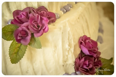 Wedding Stock (Art + Photography = ArtOgraphy) Tags: flowers wedding summer cake ryan father stock daughter mother son ringbearer rings lillies bouquet waterfountain donovan mitzi ringexchange generic sparklingcider floatingcandles ringpillow champagnefountain augustbride rememberingfather mothergaveawaybride carrotweddingcake