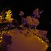 Infrared Christmas Lights 2014