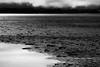 Banchisa (Puma 68) Tags: sea blackandwhite bw ice monochrome norway monocromo blackwhite europa mare north natura bn svalbard bianconero norvegia nord northpole barents banchisa ghiacci sigmaapo120400mmf4556dgoshsm
