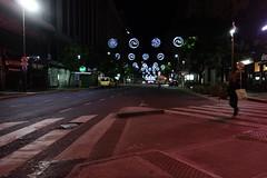 DSC04069 (Sergio Uribe) Tags: argentina navidad buenosaires