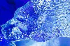 Loup (Faberis) Tags: art ice scuplture icy glace