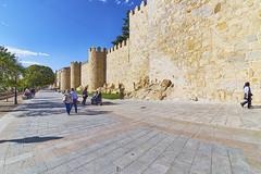 Walls of Ávila (neoBIT) Tags: tower heritage stone architecture spain arch medieval walls hilltop avila middleage ávila castillayleón castillaleon