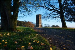 Tyrconnell Tower in Autumn