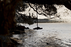 Swing (C & R Driver-Burgess) Tags: silhouette river still sand branch dunes lagoon rope swing stick ripples pohutukawa overhanging