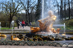 (ola_alexeeva) Tags: spring russia exploring splash fontaine  peterhof