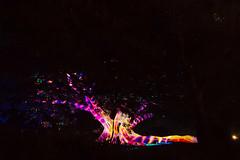Vivid Sydney (Kudret Celebi) Tags: lighting light music art festival idea artist sydney australia operahouse vividsydney