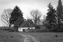 far from the civilisation (JoannaRB2009) Tags: house cottage countryside old trees nature landscape view village olenica dzkie lodzkie polska poland bw building architecture path road spring