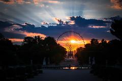 Hide and seek (vy.photographe) Tags: sunset paris wheel soleil big reflet concorde tuileries nuage contrejour coucherdesoleil granderoue