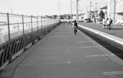 160429_CanonetGIII_020 (Matsui Hiroyuki) Tags: fujifilmneopan100acros canoncanonetgiiiql1740mmf17 epsongtx8203200dpi