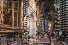 Siena - Cathedral North Aisle 2 (Le Monde1) Tags: city horses italy nikon cathedral unesco worldheritagesite rivers tuscany siena stmary elsa palio pilgrims piazzadelduomo d610 northaisle arbia santamariaassunta merse viafrancigena lemonde1