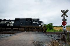 NS 290 semi-blur shot at a private grade crossing just outside Culpeper, VA. (bdunn829) Tags: railroad blur rain crossing ns culpeper trains norfolksouthern 290 railfanning gradecrossing culpeperva privatecrossing ns290