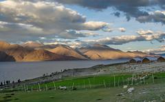 Just pure beauty !! (Rishabh Shukla Fotography) Tags: india lake beauty clouds leh pangong