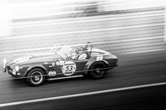 Shelby Cobra 289 (1964) (VJ Photography (www.vjimages.be)) Tags: shelby cobra 289 1964 2916 le mans classic event race circuit de la sarthe france neurrisse galant driver pilote fahrer rijder piloti coureur motorsport motorsports bw black white zw panning shot image motion speed vjimages vanhalle jurrie auto automotiive photography photographer autosport historic racing car american