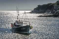 Porthleven, Cornwall (DM Allan) Tags: struan porthleven cornwall fishing boat sparkling sea coast