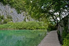 (The_mediterranean_traveler) Tags: lake green greenwater water croatia mediterranean nationalpark plitvice plitvicenationalpark woodenwalkway walkway wanderlust rawimages nikon nikonimages nikond5300 trees backpacking hiking trekking walking nature naturephotography naturalbeauty summer sunshine plants centraleurope