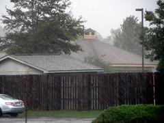Really Raining. (dccradio) Tags: lumberton nc northcarolina robesoncounty hurricanematthew matthew hurricane storm weather stormy rain raining rainy disaster flooding water bodyofwater tree trees greenery