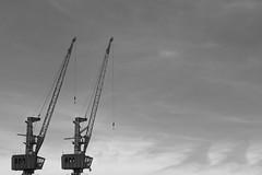 Lets get high (Fotografia & Urbanismo) Tags: fotografiaurbana fotografia focoseletivo fotografiaderua urbanismo urbanphotografy urban urbexworld urbex urbexphotografy urbano urbanphotography streetphotografy streetart street riodejaniero rio rj guindastes crane