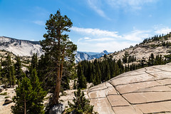Yosemite Trip - August 2014 - 122 (www.bazpics.com) Tags: california park ca cliff mountain lake rock point view unitedstates flat hill tunnel national valley yosemite granite tenaya barryoneilphotography omsted